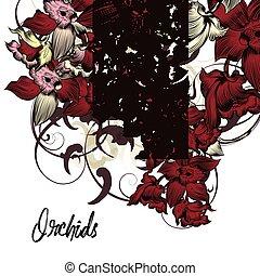 fond, orchidées, beau, floral