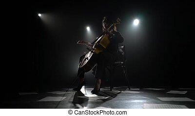 fond, plancher, silhouette., sombre, studio, violoncelle, fumée, feuilles, fille noire, jouer, notes.