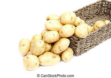 fond, pommes terre, isolé, rustique, choisi, frais, panier, nouveau, blanc