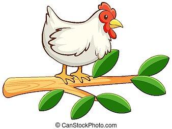 fond, poulet, blanc