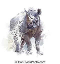 fond, rhinocéros noir, aquarelle, blanc