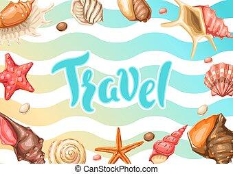 fond, shells., seashells., exotique, mollusque, sous-marin