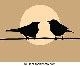 fond, soleil, oiseaux, deux, silhouette