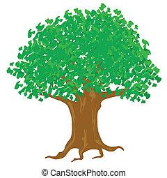 fondo, albero, illustrazione, fogliame verde, bianco