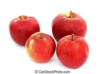 fondo, bianco, mele