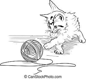 fondo blanco, gatito