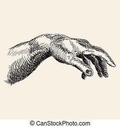 fondo., blanco, mano