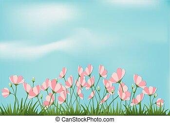 fondo, carta, erba, cielo, stile, fiori blu, cosmo, taglio, illustrazione, arte