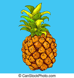 fondo, colori, ananas, frutta, azzurro, 犯罪者