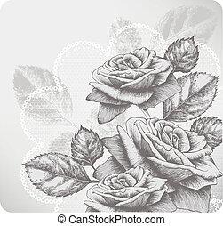 fondo, con, azzurramento, rose, e