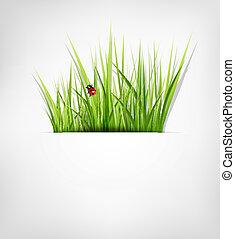 fondo, con, erba verde