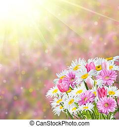 fondo, con, fragrante, fiori