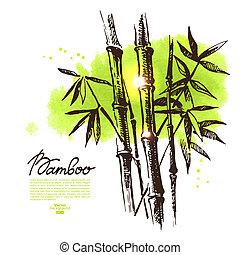 fondo, con, mano, disegnato, schizzo, bambù, e, acquarello,...