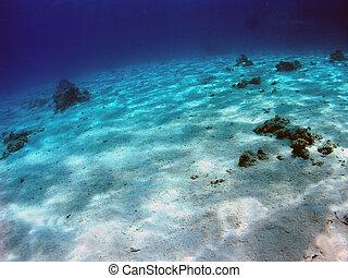 fondo del mar