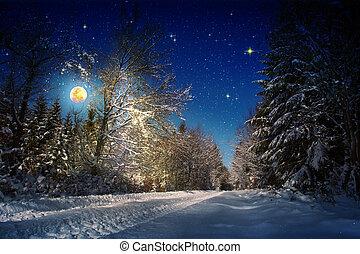fondo, grande, luna, forest., stelle, natale, inverno