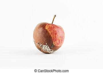 fondo., marcio, bianco, mela