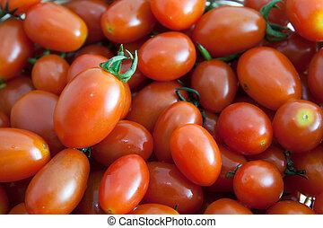 fondo., marco, lleno, reina, tomates