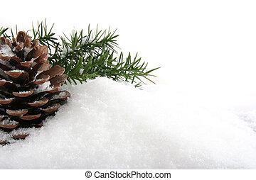 fondo, natale, pine's, cono