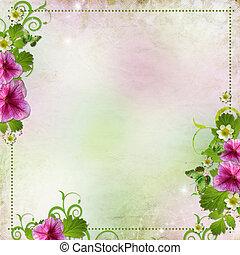 fondo, per, congratulazione, scheda, in, rosa, e, verde