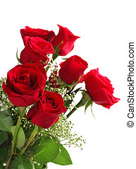 fondo, rose, mazzolino, bianco rosso