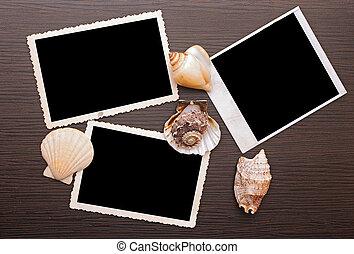 fondo, sgusciare, cornice foto, legno, mare