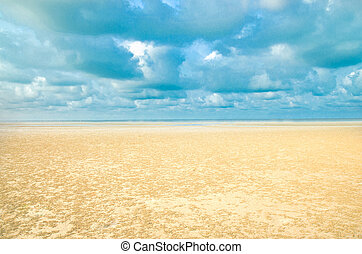 fondo., spiaggia sabbia