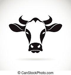 fondo., testa, vettore, bianco, mucca