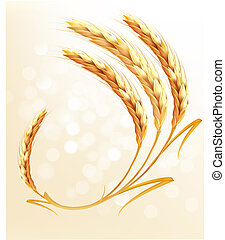 fondo., trigo, vector., orejas