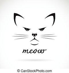 fondo., vector, gato, cara blanca