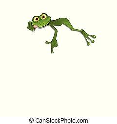 fondo, verde bianco, illustrazione, rana