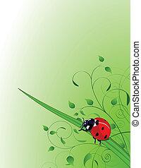 fondo verde, con, mariquita