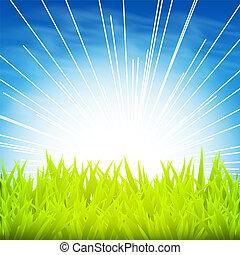 fondo verde, con, salida del sol