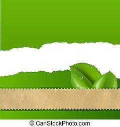 fondo verde, con, sunburst, y, hoja