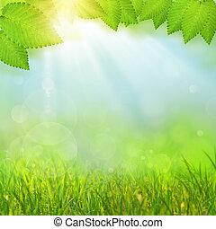 fondos, verde, selectivo, natural, foco