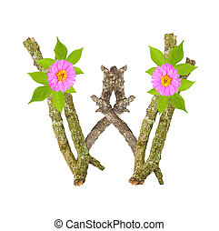 Photograph of Natural Twig and Stick Letter W