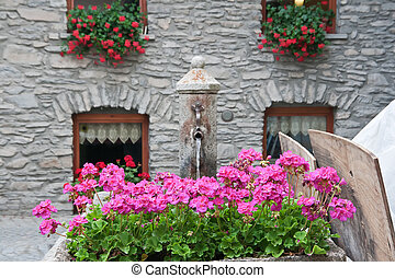fontain and flowers