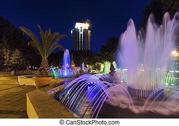 fontanna, i, noc lekka, w, przedimek określony przed rzeczownikami, town-hall, park