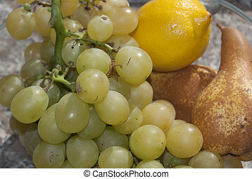 pecorino with grapes - Food and diet: Italian delicacies. ...