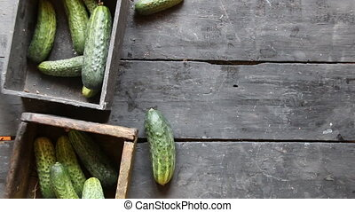 Food background. Healthy eating, food, dieting and vegetarian concept. Green Cucumbers.