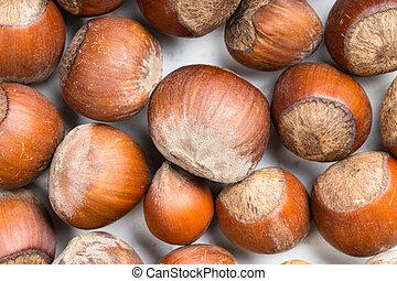 food background - many ripe whole hazelnuts