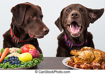 Food diet for pets