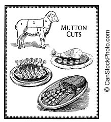 Food engraving collage, mutton cuts and food presentation