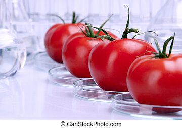 Genetically modified fruits and vegetables