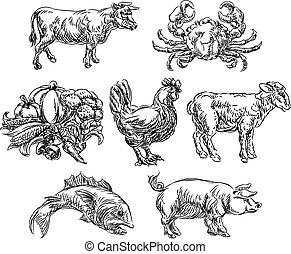 Food Groups Grunge Hand Drawn Menu Options Icons