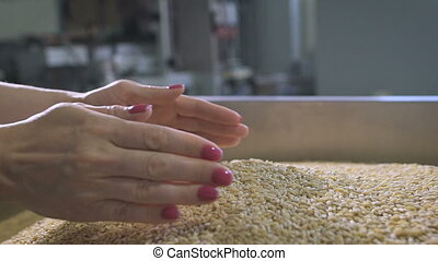 Food production. Woman manager assesses the quality of raw...