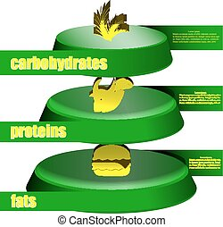 food pyramid fats protein carbohydrates