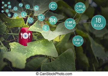Food science futuristic virtual reality concept : Fruit nutrition fact analysis and report with one finger click on digital holographic screen, Smart technology with Internet of things (IoT)