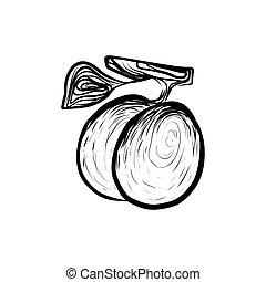 Food Sketch - Sketch Illustration of Fresh Sappy Plums...