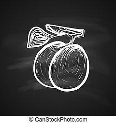 Food Sketch - Sketch Illustration of Plums Fruitful. Hand...
