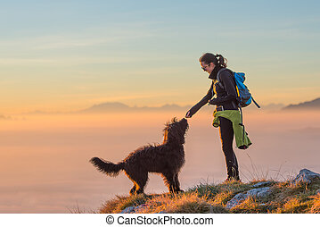 Food to the dog of a girl during an excursion in the mountains